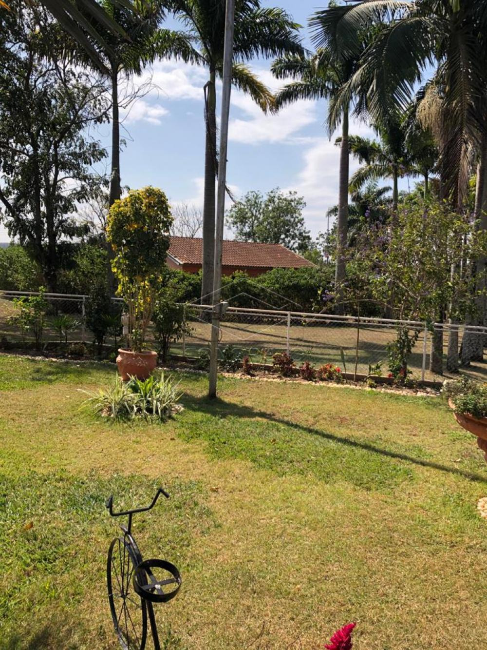 Comprar Rural / Chácara / Fazenda em Duartina apenas R$ 13.000.000,00 - Foto 20