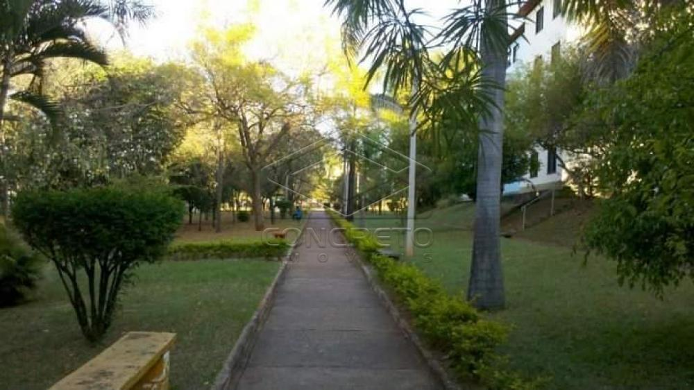 Alugar Apartamento / Padrão em Bauru apenas R$ 500,00 - Foto 2