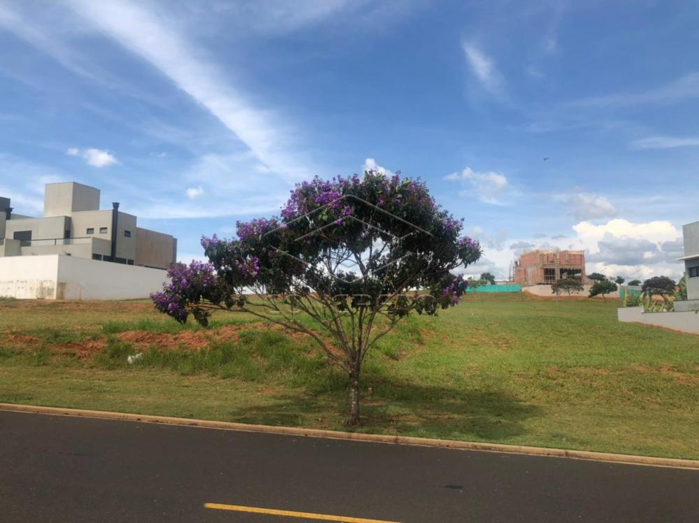 Comprar Terreno / Condomínio em Bauru R$ 420.000,00 - Foto 4