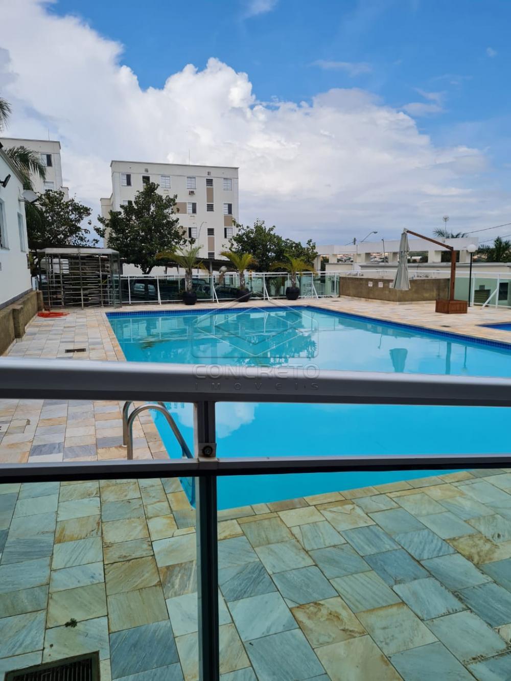 Alugar Apartamento / Padrão em Bauru apenas R$ 650,00 - Foto 5