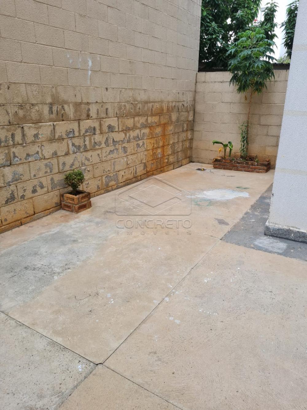 Alugar Apartamento / Padrão em Bauru apenas R$ 650,00 - Foto 11