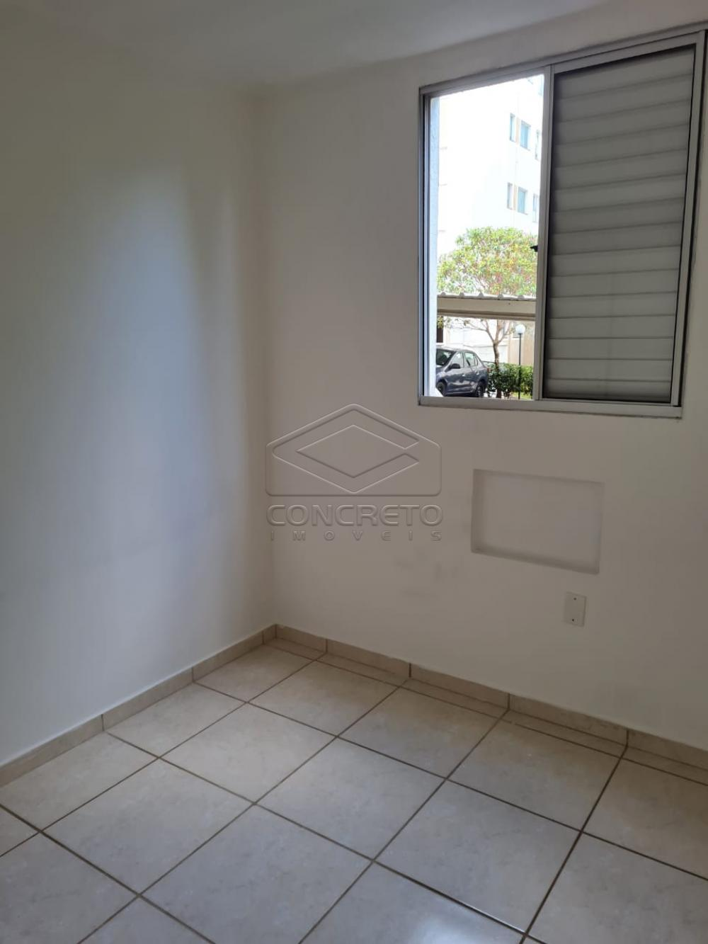 Alugar Apartamento / Padrão em Bauru apenas R$ 650,00 - Foto 9