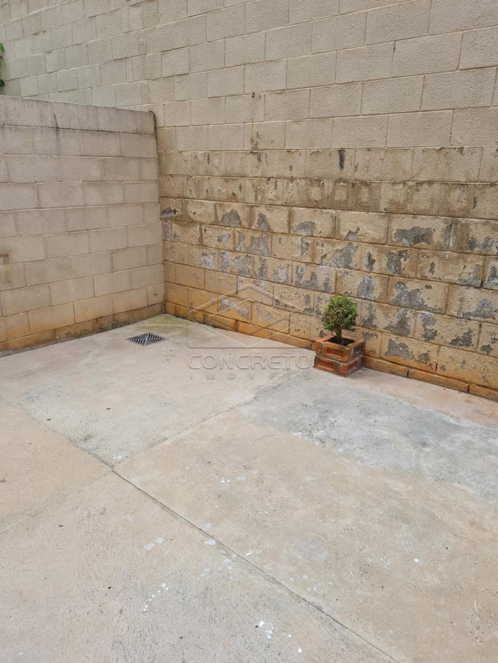 Alugar Apartamento / Padrão em Bauru apenas R$ 650,00 - Foto 13