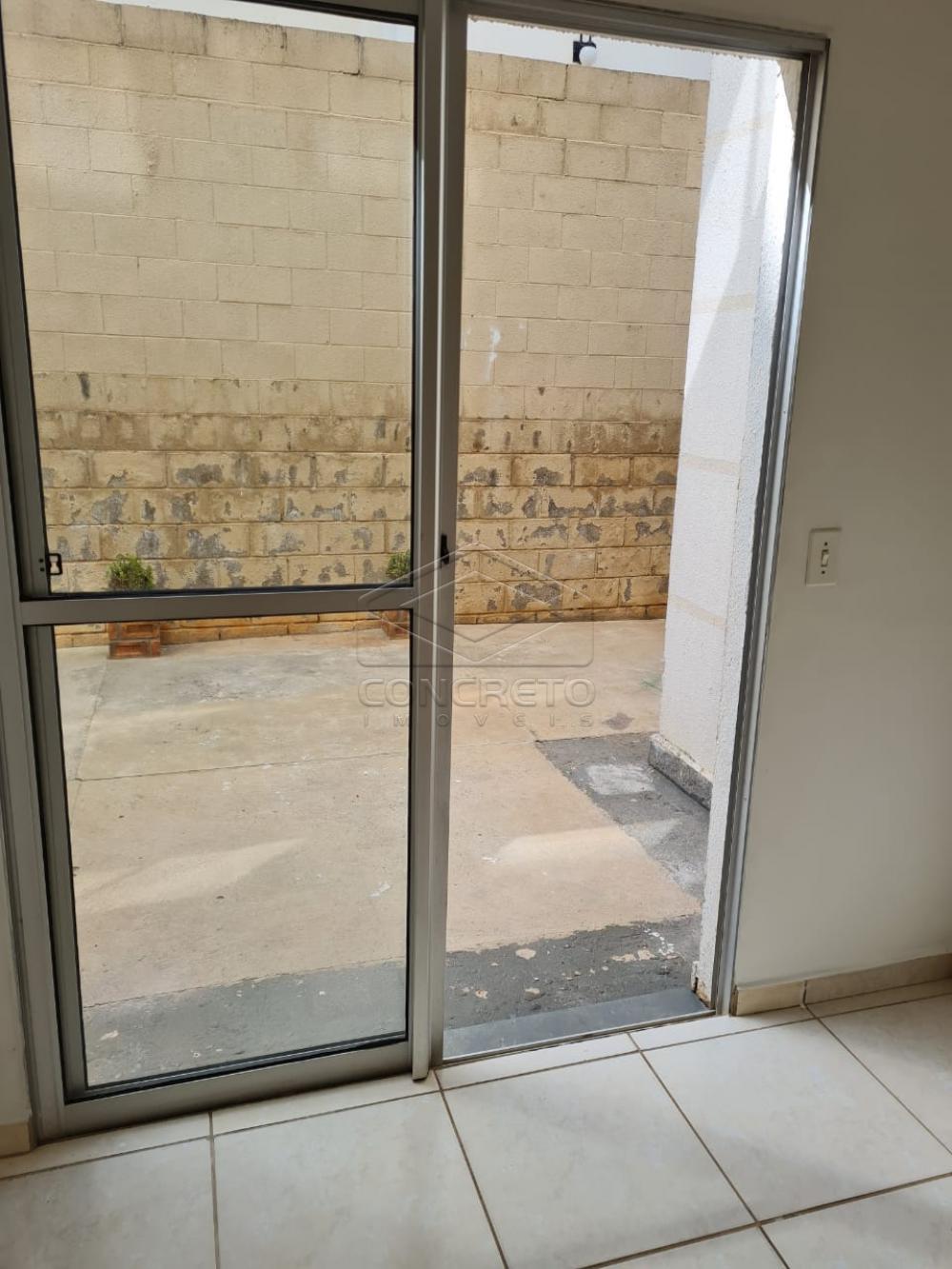 Alugar Apartamento / Padrão em Bauru apenas R$ 650,00 - Foto 15
