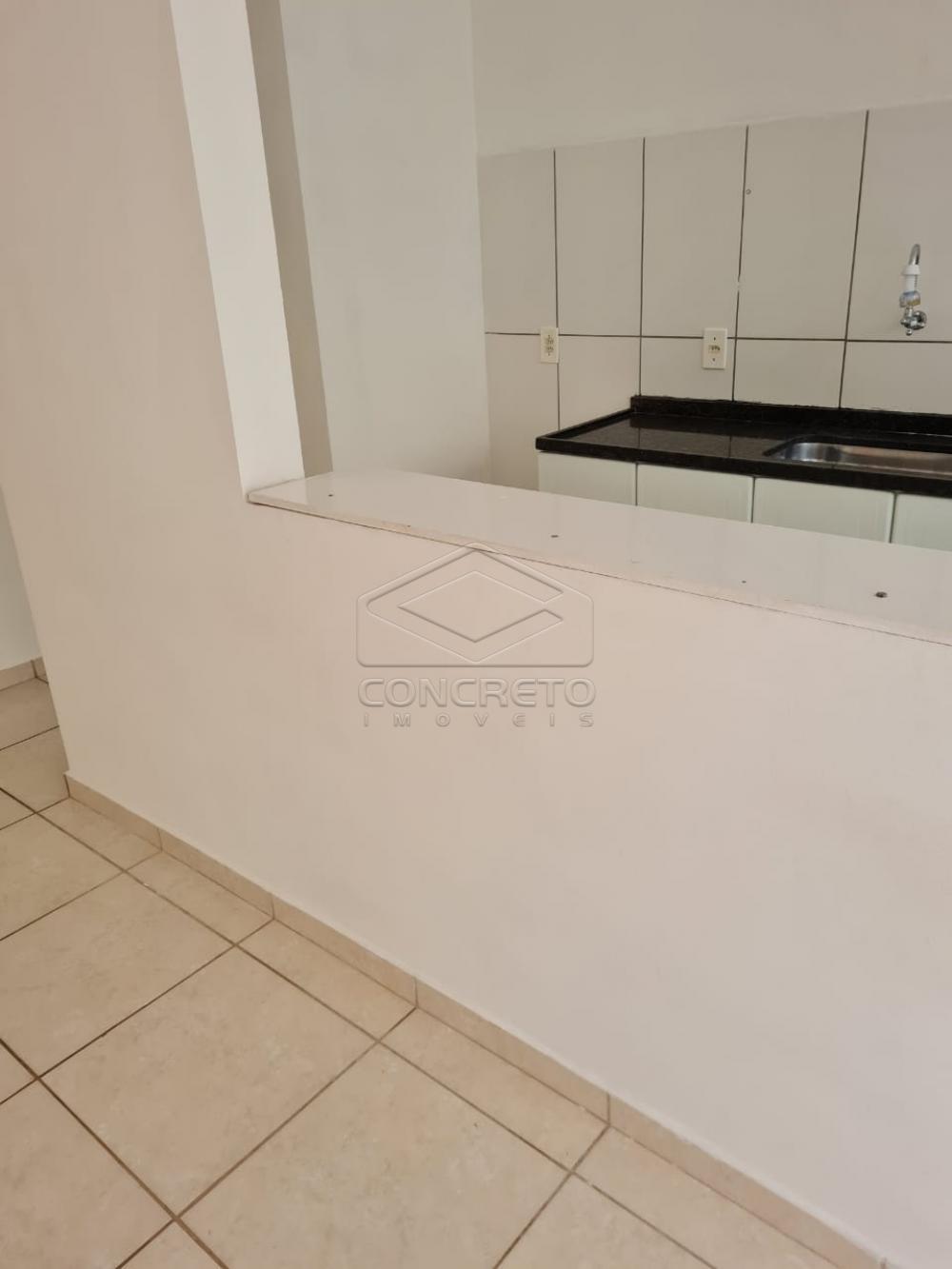 Alugar Apartamento / Padrão em Bauru apenas R$ 650,00 - Foto 17