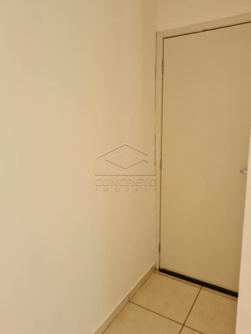 Alugar Apartamento / Padrão em Bauru apenas R$ 650,00 - Foto 18