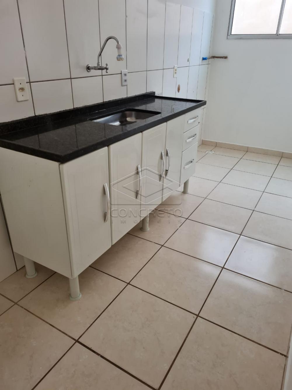 Alugar Apartamento / Padrão em Bauru apenas R$ 650,00 - Foto 19