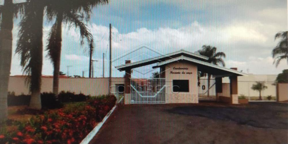 Comprar Casa / Residencia em Borborema apenas R$ 239.000,00 - Foto 6