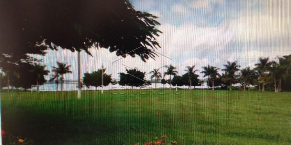 Comprar Casa / Residencia em Borborema apenas R$ 239.000,00 - Foto 10