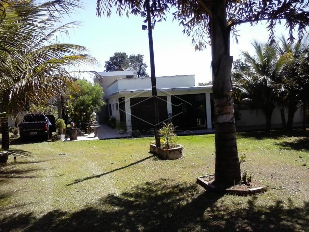 Comprar Rural / Rancho em Botucatu R$ 400.000,00 - Foto 3
