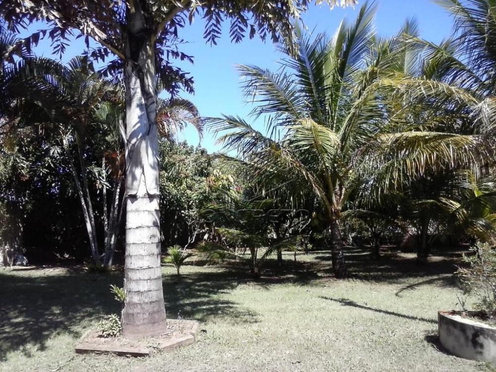 Comprar Rural / Rancho em Botucatu R$ 400.000,00 - Foto 18