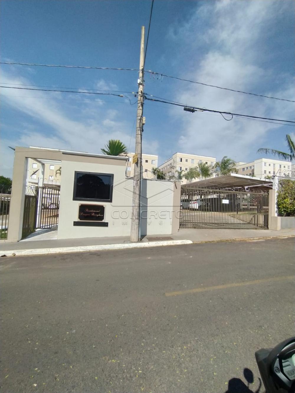 Alugar Apartamento / Padrão em Bauru R$ 600,00 - Foto 5