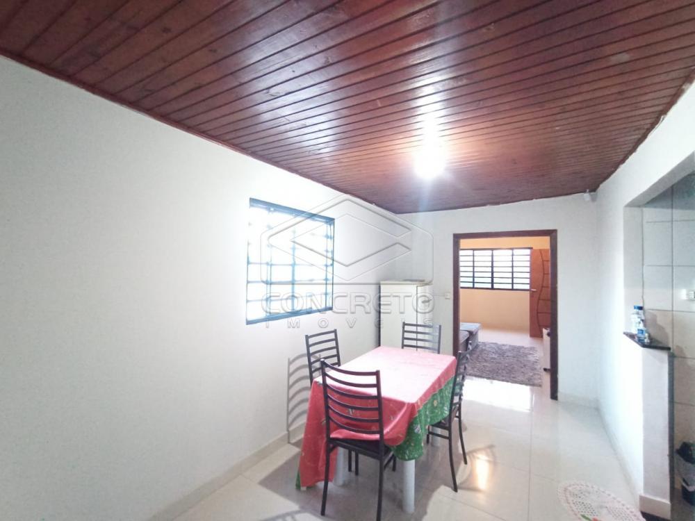 Alugar Casa / Padrão em Bauru R$ 900,00 - Foto 9
