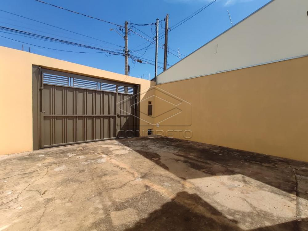 Alugar Casa / Padrão em Jaú R$ 800,00 - Foto 1