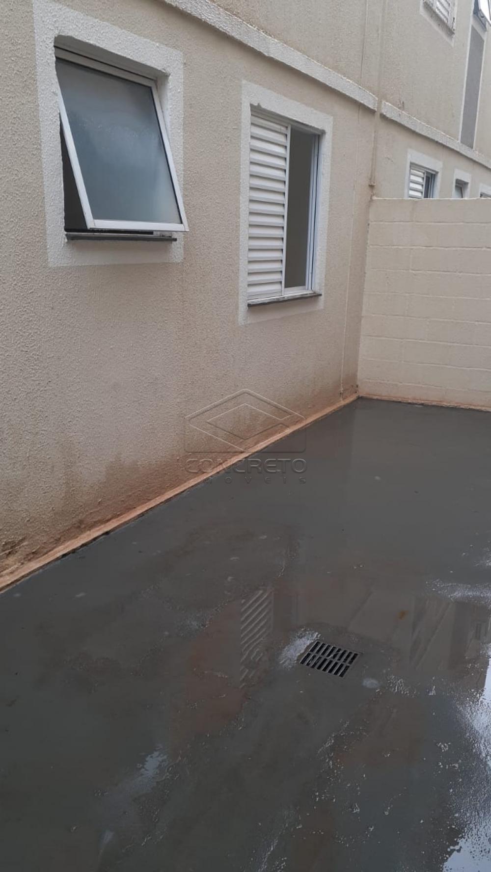 Alugar Apartamento / Padrão em Bauru R$ 790,00 - Foto 3