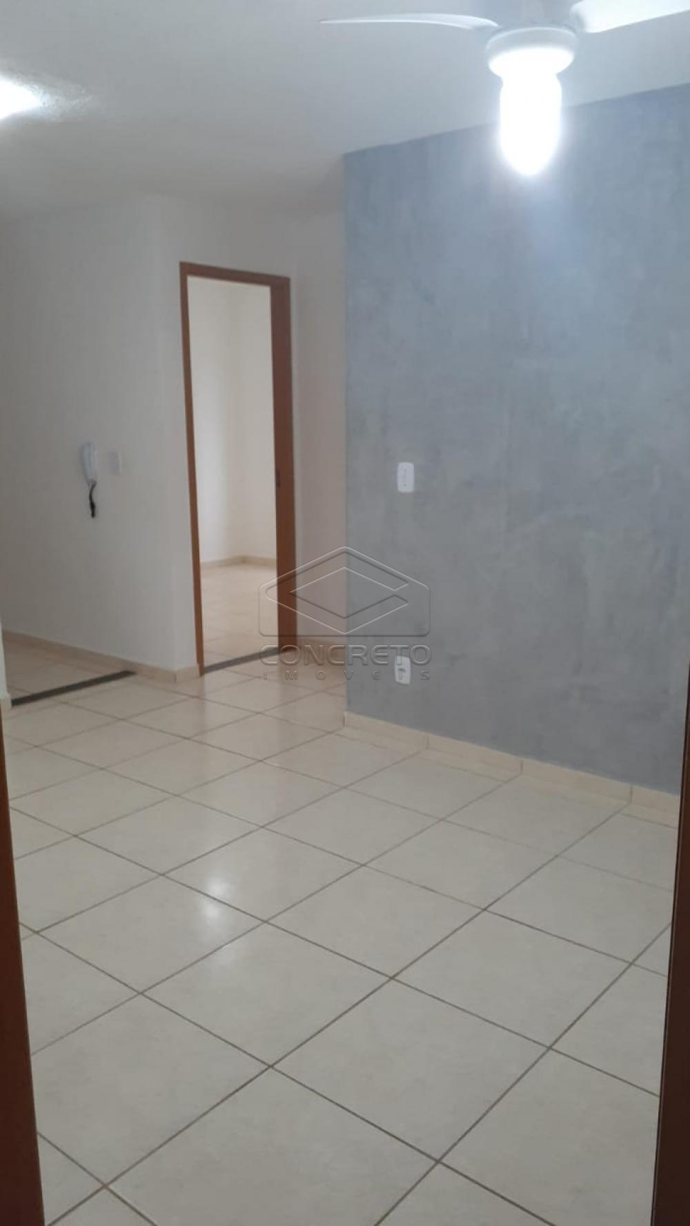 Alugar Apartamento / Padrão em Bauru R$ 790,00 - Foto 5