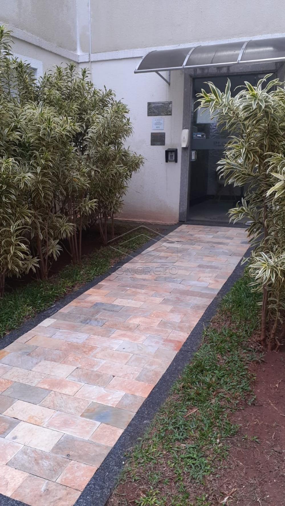 Alugar Apartamento / Padrão em Bauru R$ 790,00 - Foto 12