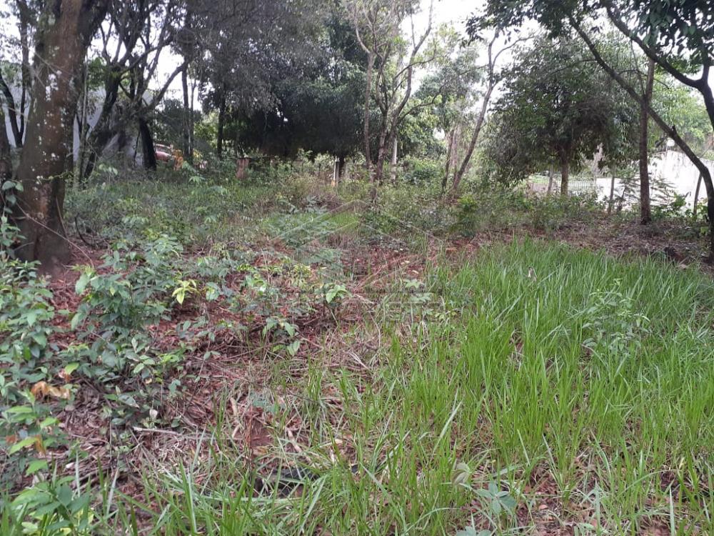 Comprar Terreno / Padrão em Bauru R$ 80.000,00 - Foto 8