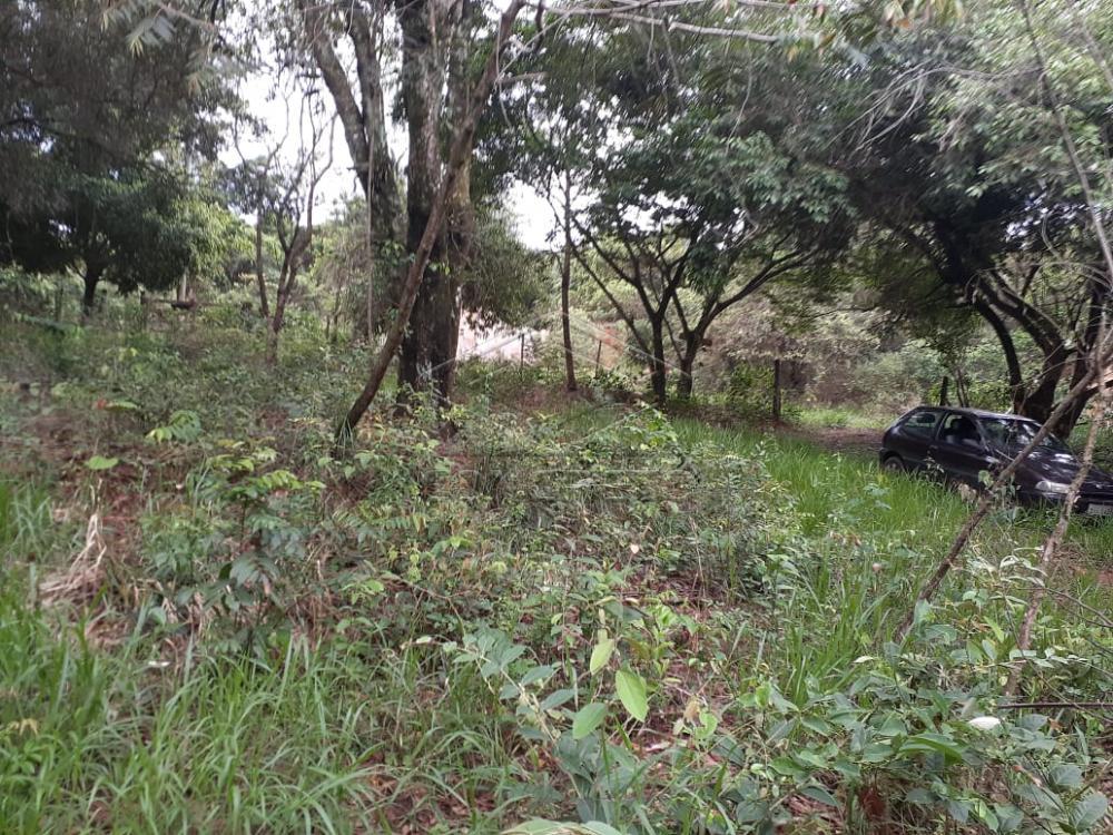 Comprar Terreno / Padrão em Bauru R$ 80.000,00 - Foto 3