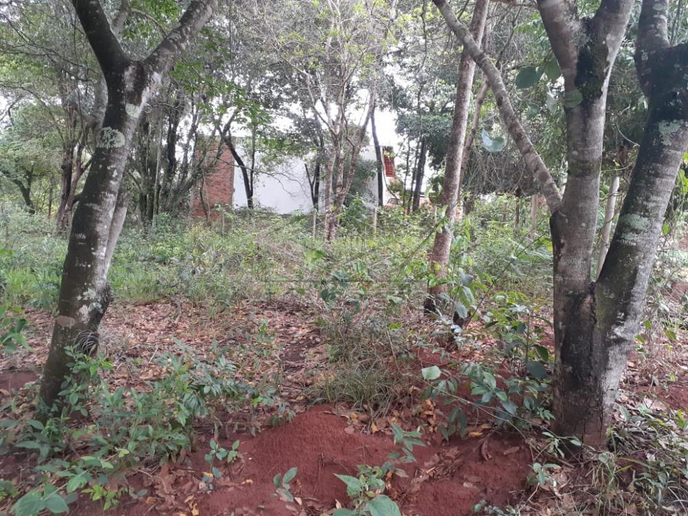 Comprar Terreno / Padrão em Bauru R$ 80.000,00 - Foto 17