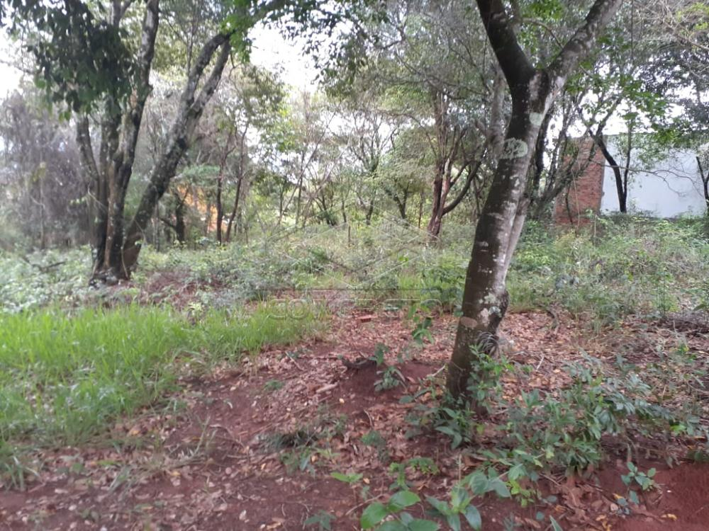Comprar Terreno / Padrão em Bauru R$ 80.000,00 - Foto 15