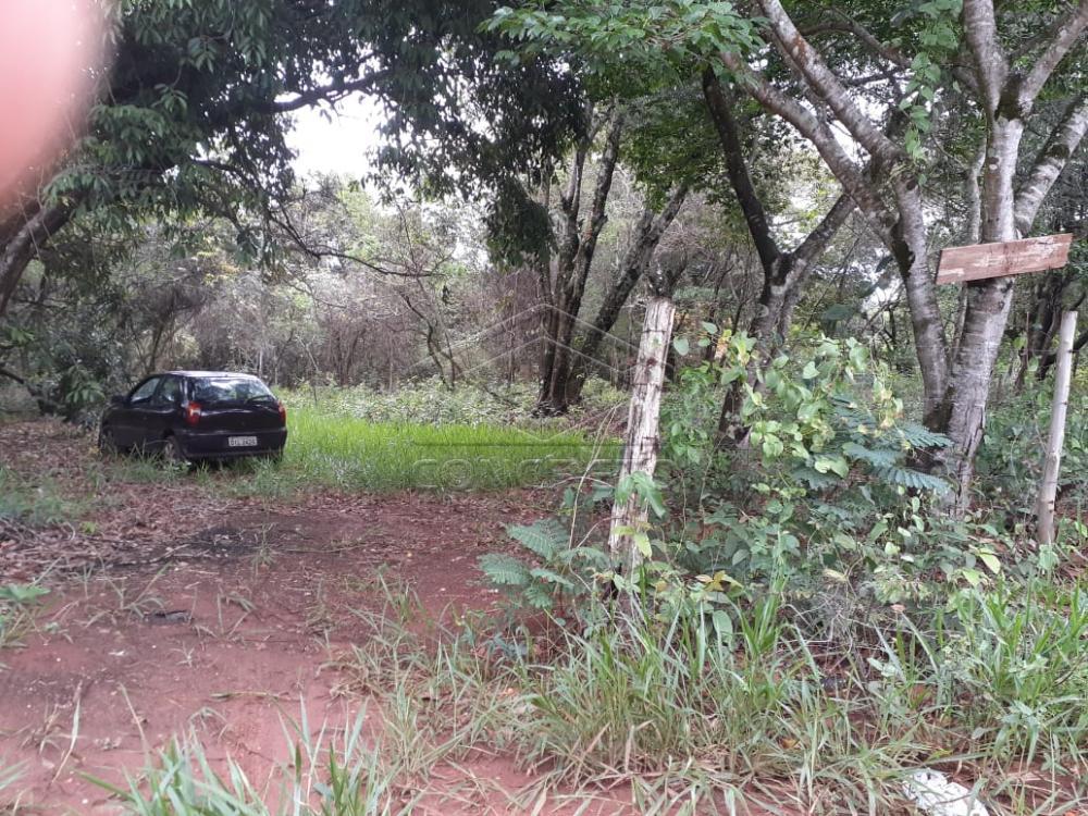 Comprar Terreno / Padrão em Bauru R$ 80.000,00 - Foto 18