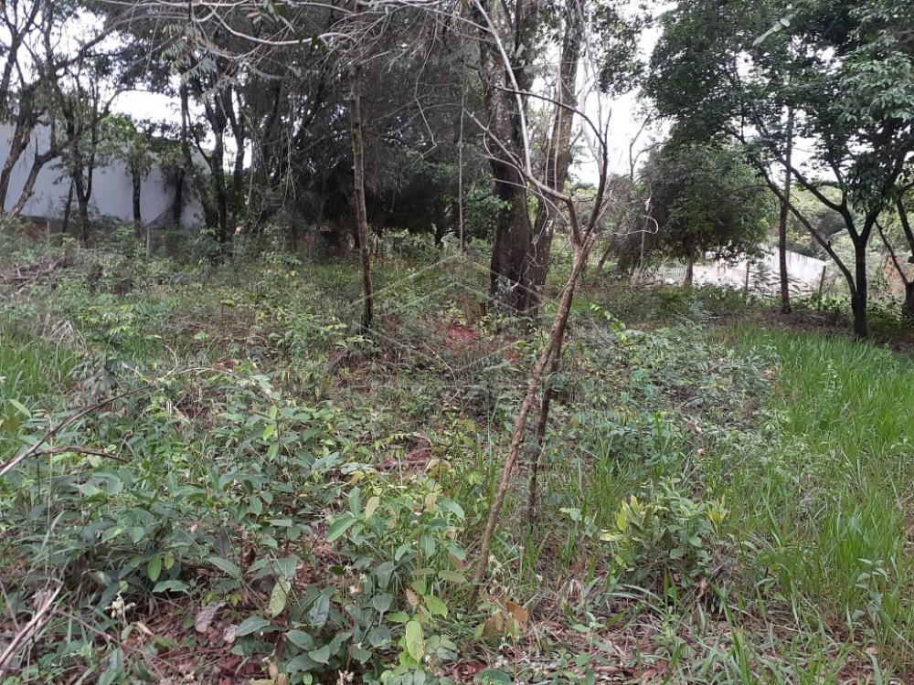 Comprar Terreno / Padrão em Bauru R$ 80.000,00 - Foto 11