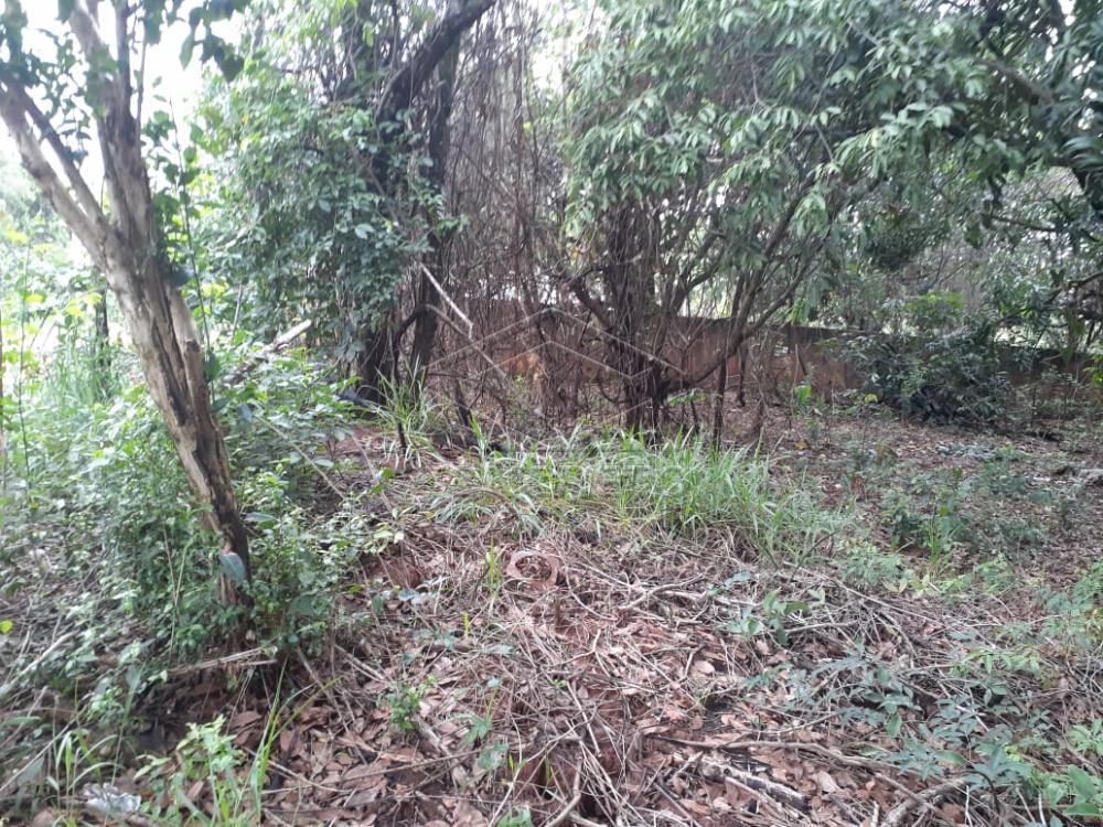 Comprar Terreno / Padrão em Bauru R$ 80.000,00 - Foto 14