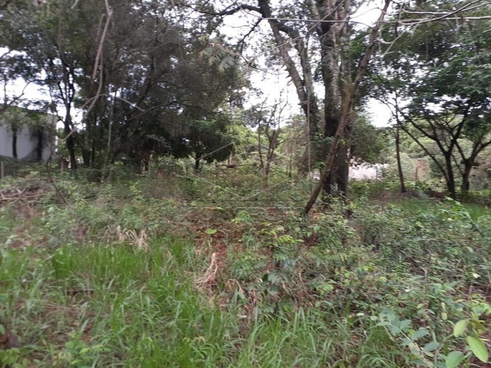 Comprar Terreno / Padrão em Bauru R$ 150.000,00 - Foto 1