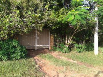 Alugar Rural / Chácara / Fazenda em Sao Manuel. apenas R$ 450.000,00