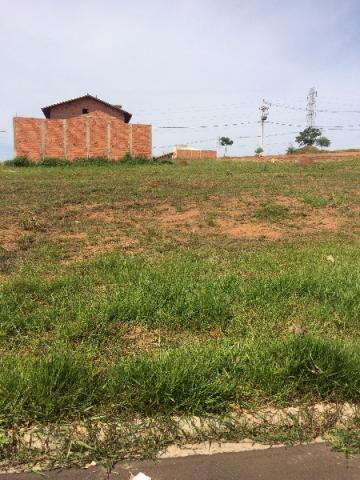 Alugar Terreno / Padrão em Botucatu. apenas R$ 100.000,00