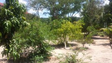 Alugar Rural / Rancho em Botucatu. apenas R$ 390.000,00