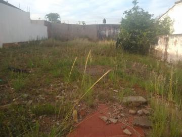Alugar Terreno / Padrão em Bauru. apenas R$ 135.000,00
