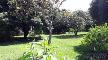 Jau Jardim Primavera Terreno Venda R$850.000,00