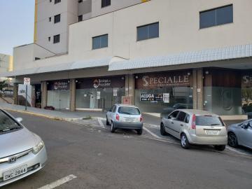 Casa / Comercial em Bauru Alugar por R$15.800,00