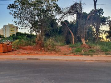 Alugar Terreno / Padrão em Bauru. apenas R$ 660.000,00