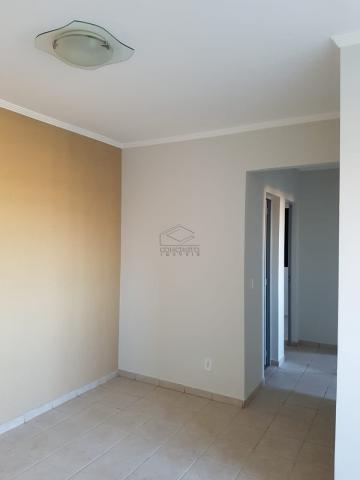 Alugar Apartamento / Padrão em Bauru. apenas R$ 175.000,00