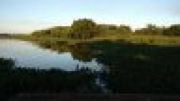 Alugar Rural / Chácara / Fazenda em Arealva. apenas R$ 370.000,00