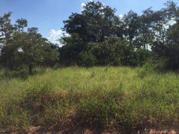 Alugar Terreno / Padrão em Bauru. apenas R$ 306.000,00