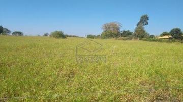 Piratininga Area Rural chacara Venda R$920.000,00 3 Dormitorios 2 Vagas Area construida 120.00m2