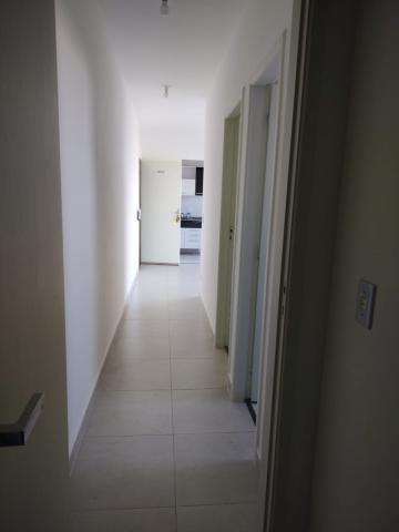 Alugar Apartamentos / Apartamento em Botucatu. apenas R$ 1.000,00