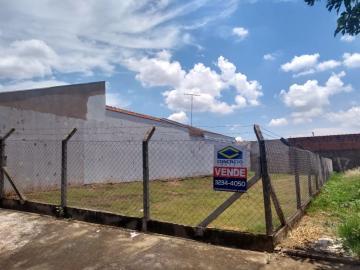 Alugar Terreno / Padrão em Bauru. apenas R$ 150.000,00