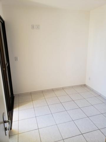 Alugar Apartamento / Padrão em Bauru. apenas R$ 1.350,00