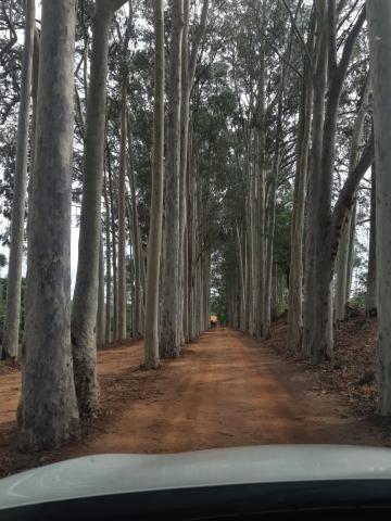 Rural / Chácara / Fazenda em Bauru , Comprar por R$2.320.000,00