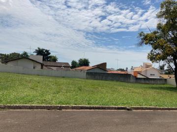 Alugar Terreno / Condomínio em Bauru. apenas R$ 350.000,00