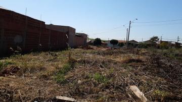 Alugar Terreno / Padrão em Macatuba. apenas R$ 90.000,00