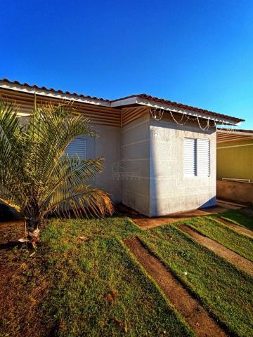 Alugar Casa / Condomínio em Bauru. apenas R$ 900,00