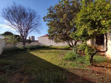 Alugar Casa / Residencia em Jaú R$ 7.000,00 - Foto 9